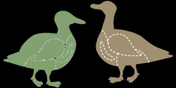 鴨肉の選び方画像