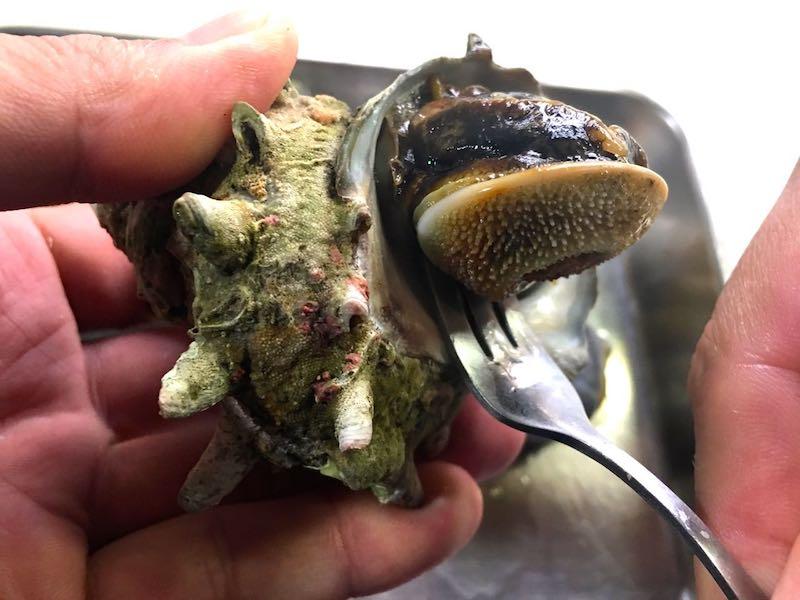 サザエのエスカルゴバター焼き11