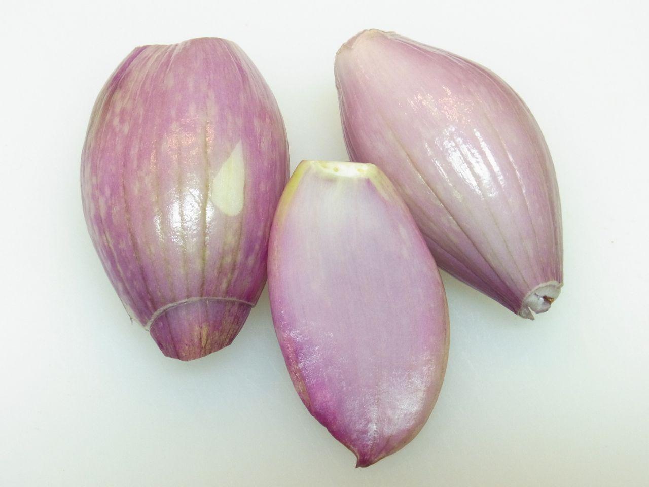桜海老サラダ0