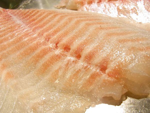 真鯛のライトスモーク6