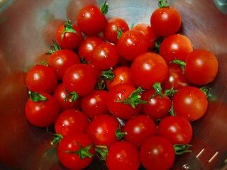 ドライトマト1