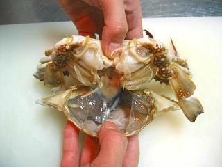 渡り蟹下処理5